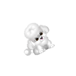 July Monthly Handheld Poodle