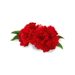 Red Carnation Barrette