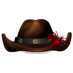 Dark Brown Cowboy Hat with Red Decor
