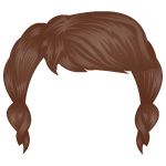 Native Indian Girl Wig
