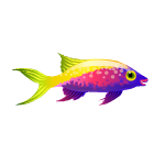 Bartlett's Anthias Fish