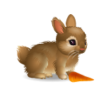 Banner Adorable Gems Bunny