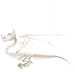 Magical Creature Skeleton