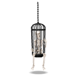Animated Skeleton in Cage