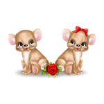 Loverboy and Lovergirl Mice Couple
