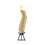 Spine Candle