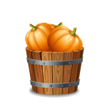 Toy Basket with Pumpkin
