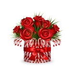 Roses in Candy Cane Vase