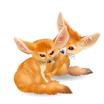 Animated Desert Foxes