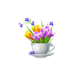 Tulips Bouquet in Cup