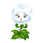 Animated White Rose Flower