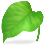 Oversized Calla Leaf 1