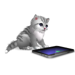 Playful Kitten with Tablet
