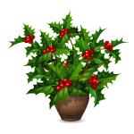 Potted Winter Berry