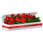 Box of Long Stemmed Red Roses
