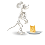 Mouse Skeleton with Cheese