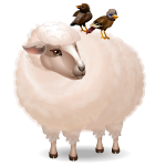 Friendly Sheep with Birds
