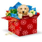 Banner Puppy in a Gift Box