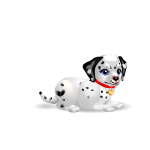 Banner Playful Dalmatian Puppy Girl