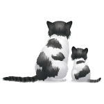 Backfacing Black and White Cat and Kitten