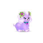 Banner Purple Color Berry Puppy