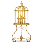 Elegant Gold Cage with Canary