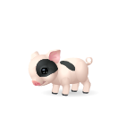 Cute Piglet with Black Spots