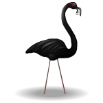 Black Vampire Flamingo 1