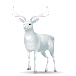 Majestic White Deer