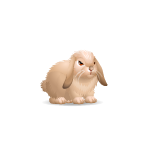 Banner Animated Lop Eared Bunny