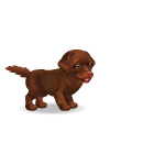 Banner Brown Labrador Puppy