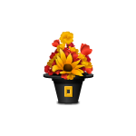 Autumn Flowers In A Pilgrim Hat