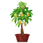 Banner Enchanted Money Tree