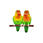 Banner Animated Love Birds