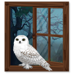 Habi - White Owl Perched on Window