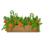 Planter with Ferns 2