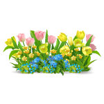 Yellow and Pink Tulips Border