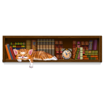 Bookshelf with Sleepy Kitty