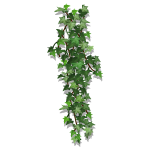 Vertical Ivy Foliage